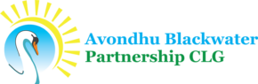 Avondhu Blackwater Partnership brings Towards Occupation Support  to Fermoy